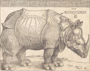 Dürer, Rhinocerus